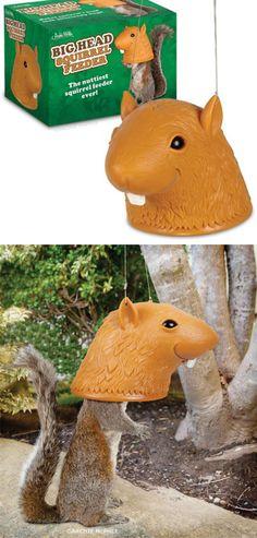 Big Head Squirrel Feeder : )