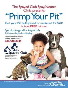 Philadelphia area clinic offers $20 pit bull spay/neuter promotion