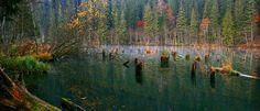 Lacul Roșu, cel mai mare lac natural montan din România. Numele său provine de la Pârâul Roșu care traversează straturi de culoare roșie cu oxizi și hidroxizi de fier.