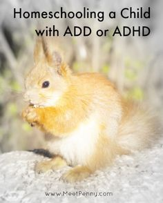 Resources for homeschooling a child with ADD or ADHD