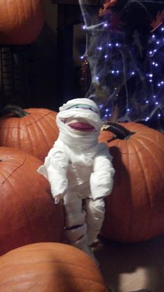 Pier 1 Rainbow Sock Monkey tries on a mummy costume for Halloween