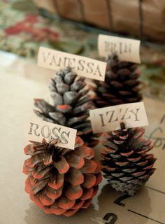 Pinecones Place Cards Settings.