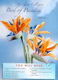 Bird of Paradise flower and how to make it out of gumpaste