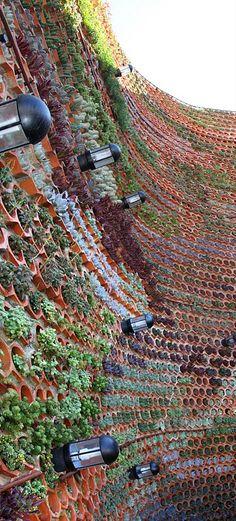 The green wall ,using terra cotta planters,creative & ecofriendly idea.