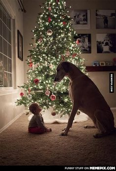 Telling the little one the true meaning of Christmas