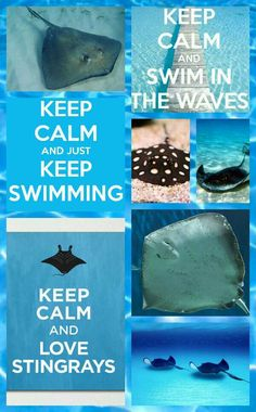 I WILL! stingrays are my favorite animals and i would do anything to spend more time with them! cuz i dont see them to often :(