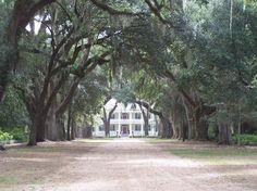 plantation homes in louisiana, rosedown plantat, louisiana plantat