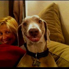 A felicidade escolhe os sorrisos como lugar para passear. Aproveite! ;) #Cachorro #Sorria #Felicidade