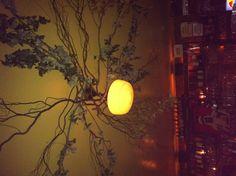 Soho cafe- interesting ceiling decor    www.redcedarcafe.com  #redcedarcafe #cafe #food #lunch #dinner #cook #lansing #lovelansing