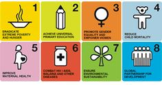HDF's Millenium Development Goals. Help us achieve these and contribute to our programs. www.HDF.com/Donate