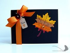 thanksgiv card, color, fall cards, holiday cards, thanksgiving cards