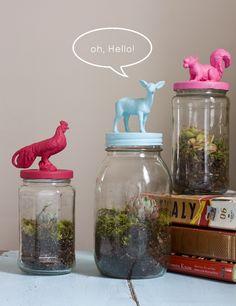 Terrariums In a Recycled Jar recycl jar, recycled jars, jar topper, terrarium