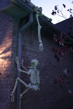 halloween house decor, outdoor decorations, halloween decorations, halloween parties, outside decorations, gutter downspout, skeletons on house, halloween decorating ideas, halloween ideas