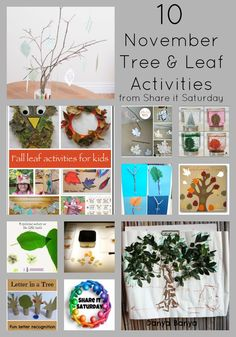 November Tree and Leaf Activities