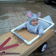 Baby Mouse Caught in Mouse Trap