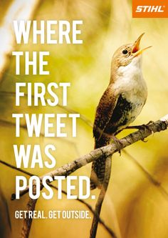 Where the first tweet was posted.  Get real. Get outside.