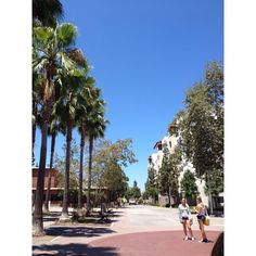 """Hanging out by the dorms. @betta______'s photo: """"#college #sandiego #sdsu #california"""""""