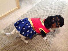 Maggie as Wonder Woman