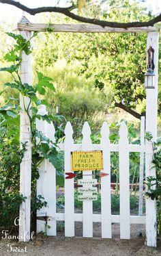 vegetable garden 10