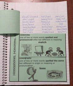 classroom dream, homonym, school, vocabulari, ela, educationlanguag art, teach, grammar
