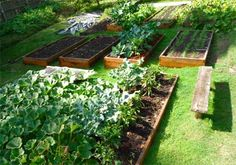 Garden as if your life depended on it, because it does