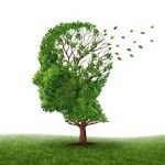 Improve Your Memory (Naturally)