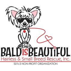 Bald Is Beautiful Hairless & Small Bree Dog Rescue Shopping Page