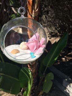Orbs hung in the palm tree over the guest book. Sand shells sea glass and a pink cymbidium orchid #bellablooms
