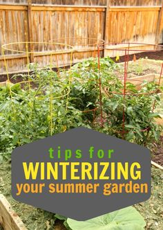 Tips for Winterizing