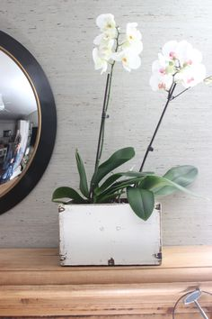Rustic white box from HomeGoods with a couple of white orchids adds softness to this mantel.  #HomeGoods #homegoodshappy #sponsored