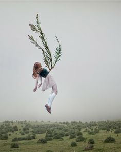 photography by maia flore