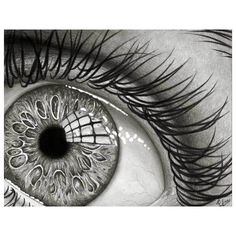 Truly Inspired Traditional Black and White Drawings ❤ liked on Polyvore