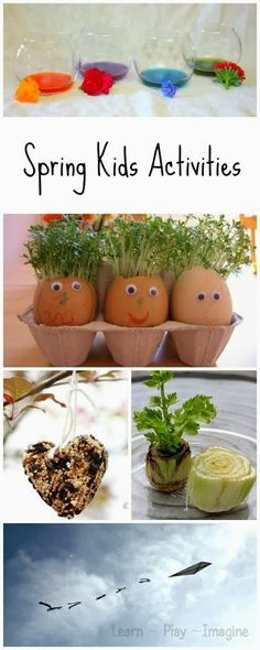 seed activities for kids, flower craft, art craft ideas for kids, kids diy, nature craft toddler, kid activities, seed activities toddlers, nature activities for toddlers, kids arts and craft ideas