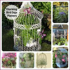 Bird cages are not just for the birds!  Round up of interesting bird cages used as planters.