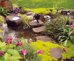 step stone, stone paths, water features, garden paths, pondswat featur, water garden, backyard pond, backyards, stepping stones