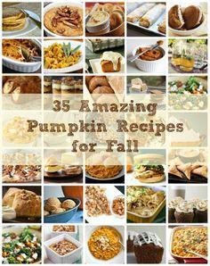 pumpkin recipes, pumpkin cakes, healthy eating, cake recip, pumpkin pumpkin, decorated cookies, pumpkin dessert, healthy desserts, health foods