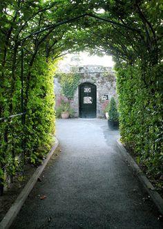 dromoland castle ireland, secret gardens, white wines, castles, amaz, door, walk, flower, bowls