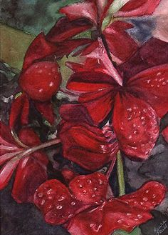 Hey, I found this really awesome Etsy listing at https://www.etsy.com/listing/51998696/red-geranium-flower-reproduction-print