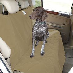 Orvis XL Backseat Pr