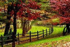 Greenwood Gardens in Short Hills New Jersey