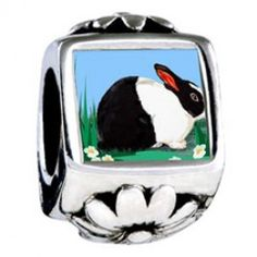 Wildlife Dutch Rabbit Photo Flower Charms  Fit pandora,trollbeads,chamilia,biagi,soufeel and any customized bracelet/necklaces. #Jewelry #Fashion #Silver# handcraft #DIY #Accessory