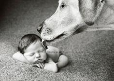baby's first (doggie) kiss kiss, newborn photography, pet, newborn photos, baby pictures, baby dogs, puppi, baby photos, peanut butter