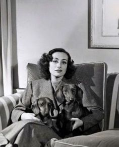 """Infamous actress Joan Crawford may have been maligned by her daughter in Mommie Dearest, but she clearly loved her three dachshunds: Baby, Bübchen and Schmeltzy. A lover of dogs all her life, she did not restrict herself to Dachshunds. Her daughter once claimed that all her mother wanted was """"fans and puppies, not human beings."""""""