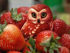 bird, red, fruit carvings, strawberri owl, dinner ideas