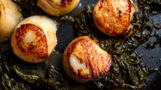 Recipe: Scallops With Sorrel Butter || Photo: Andrew Scrivani for The New York Times