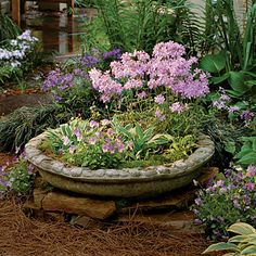 82 Creative Container garden ideas: pictured is hostas, violas, & blue phlox in a concrete bird bath