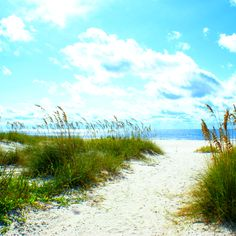 White, sandy beaches of the Gulf of Mexico!