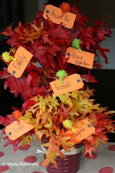 Thankful Tree- Yesterday on Tuesday #thanksgiving #thankful