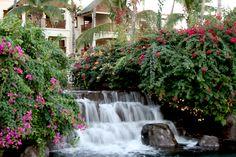 The Hilton - Mauritius