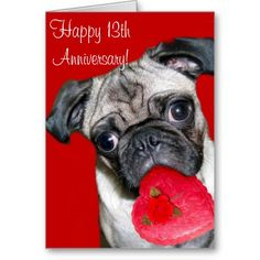 happy 13th anniversary pug